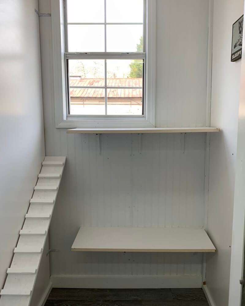 North Hall Kennel - Cattery