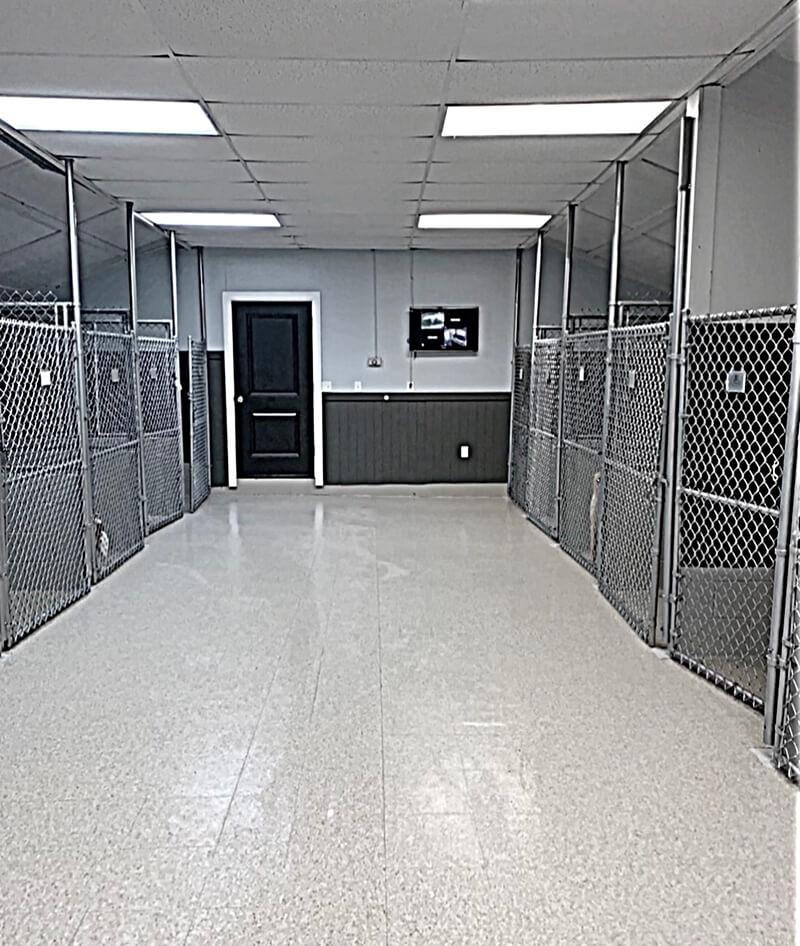 North Hall Dog Kennel - Dog Kennels